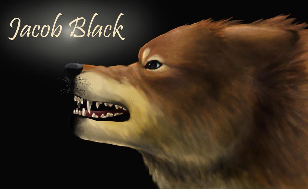 Jacob Black Werewolf Jacob Black as a Werewolf by