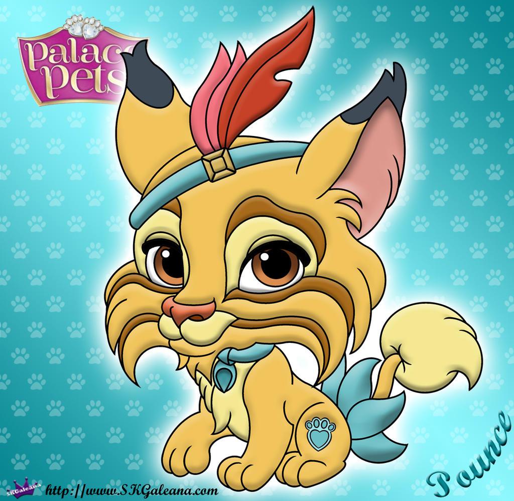 D D Cat S Pounce