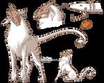 Koiranos Adoptable 6 - CLOSED