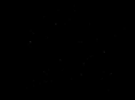 Flaff Griffin Lineart by Karijn-s-Basement