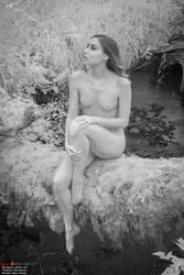Mossy Log and Beautiful Skin by Mac--Photo