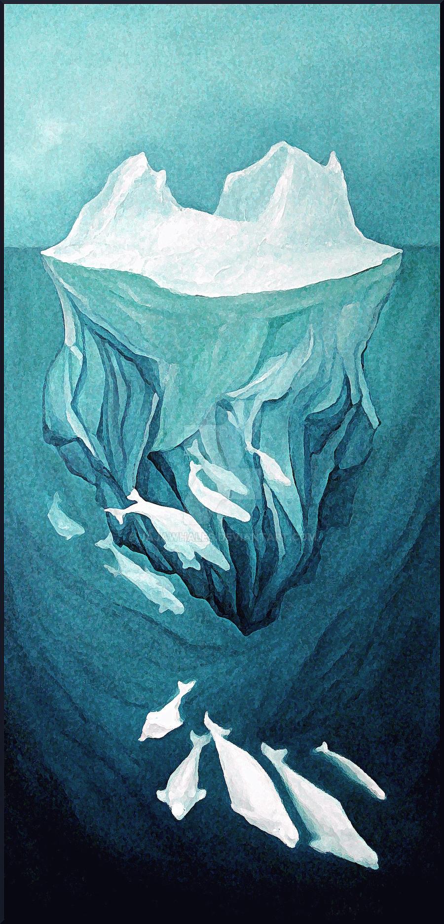 Arctic's belugas by JAJAwhales