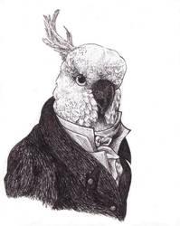 Bird Gentleman by howolf12