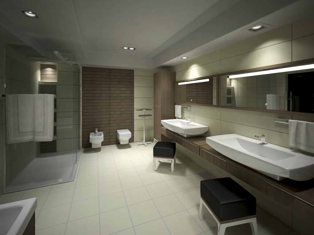 Bathroom Viz - Night - 5 by zipper