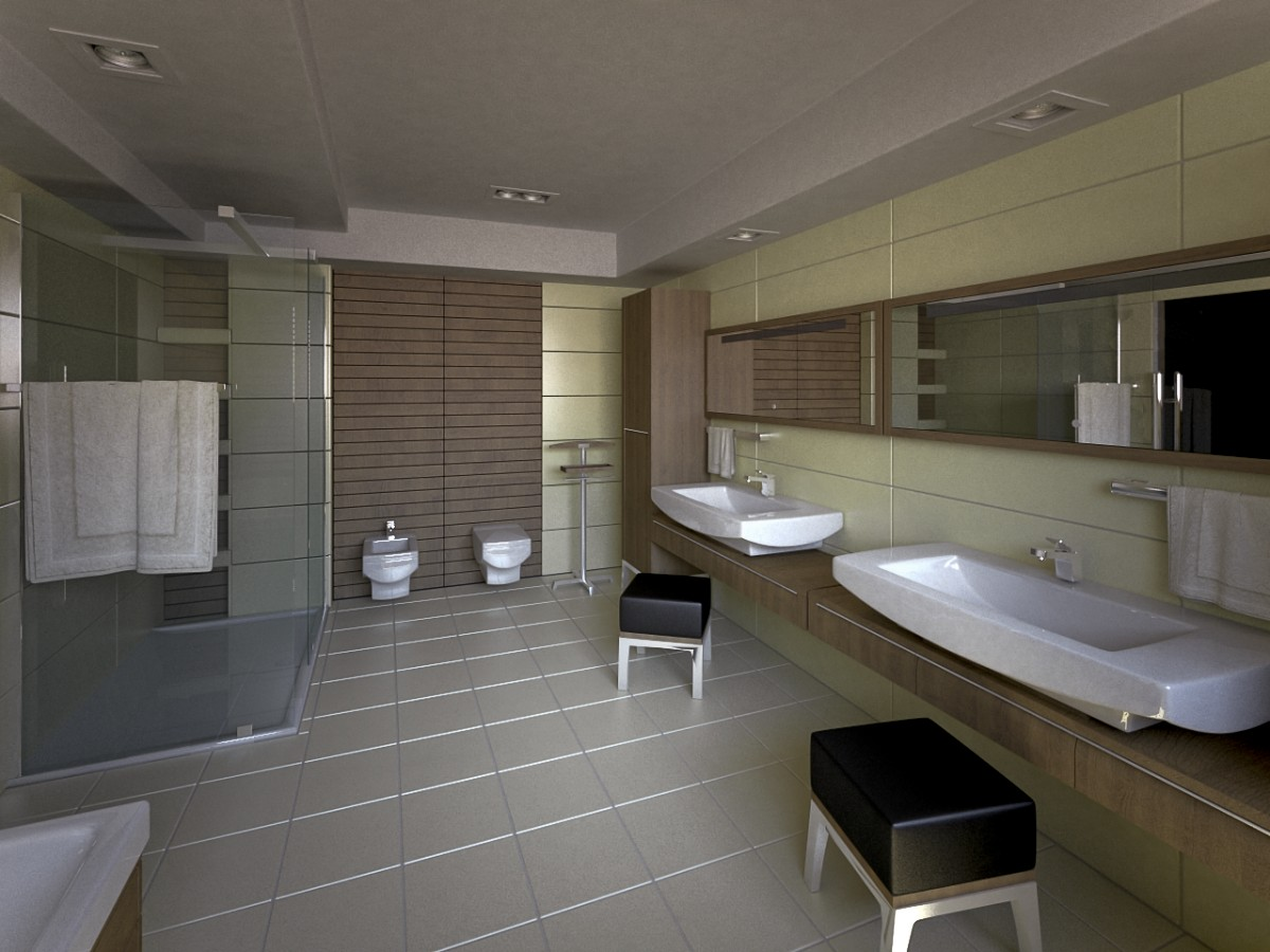 Bathroom Viz - Day - 5 by zipper