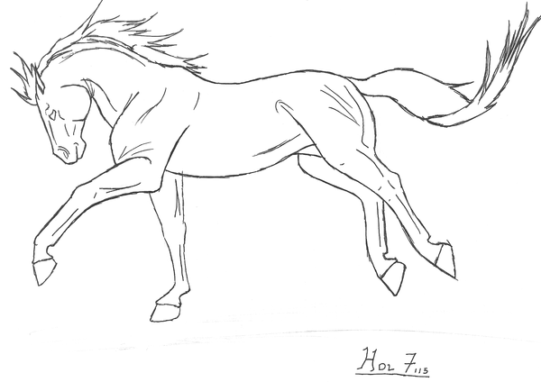 Gallop Sketch by Horsesdontlie