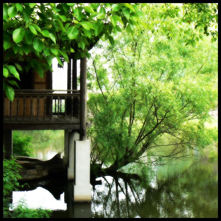 Shanghai Botanica Garden by JJ-Ying