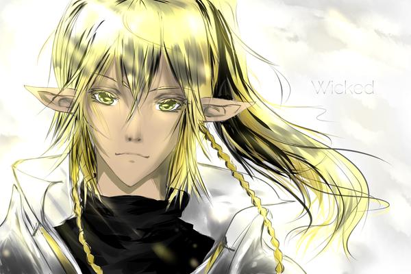 Wicked by xaelyie
