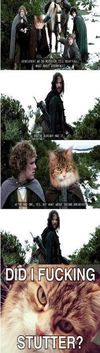 Second Breakfast Kitty