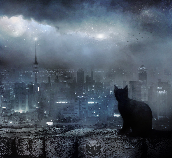 my lovely city by CAT-GIRL-Q8