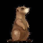 Prairie Dog Companion