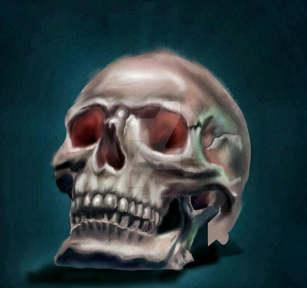 skull by Chrystinator