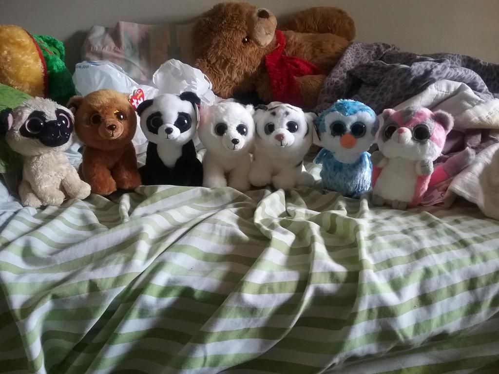 Some of My Beanie Babies by PandaPawzZz
