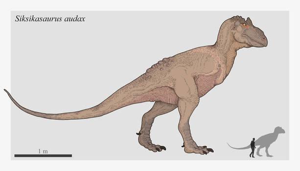 Siksikasaurus