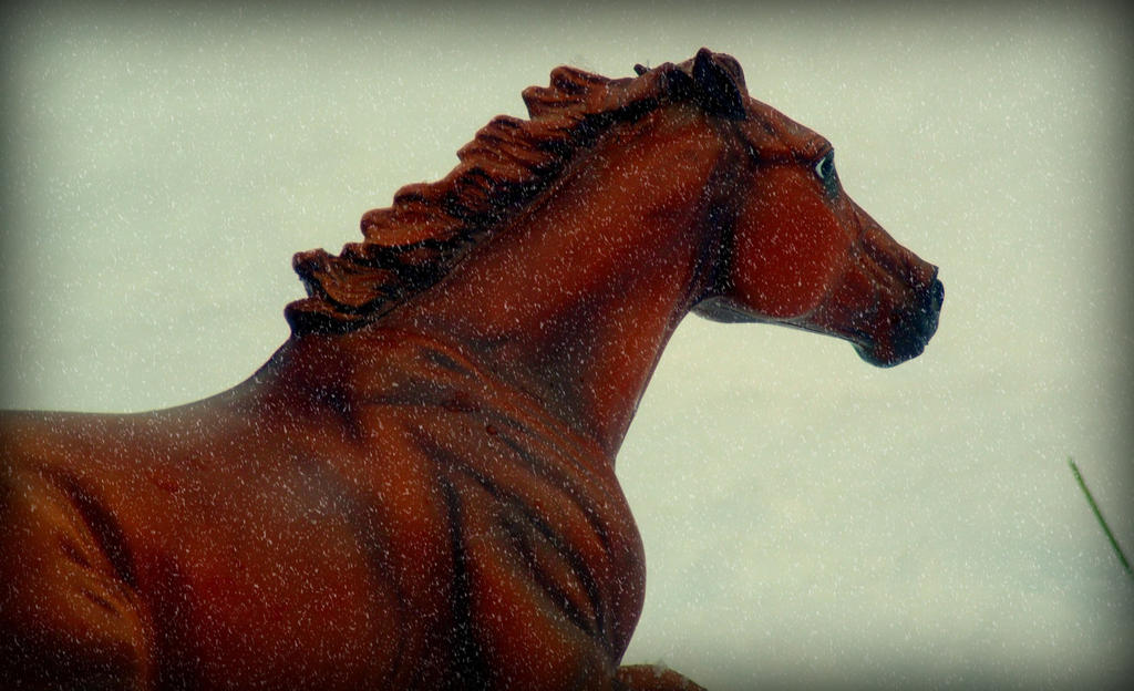bright chestnut stallion in the snow by Foreigner227