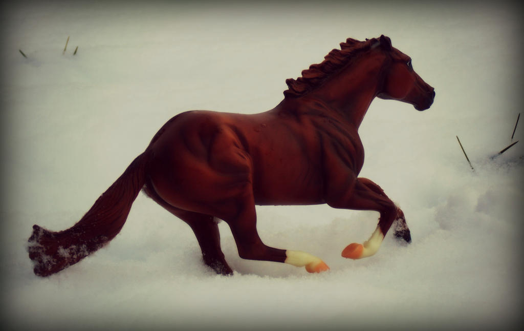 dashing though the snow by Foreigner227