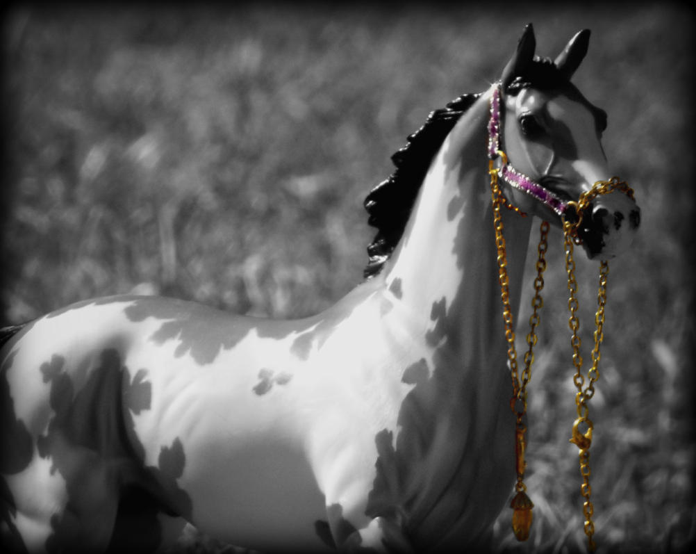 show stopper blackandwhite mixed with purple by Foreigner227