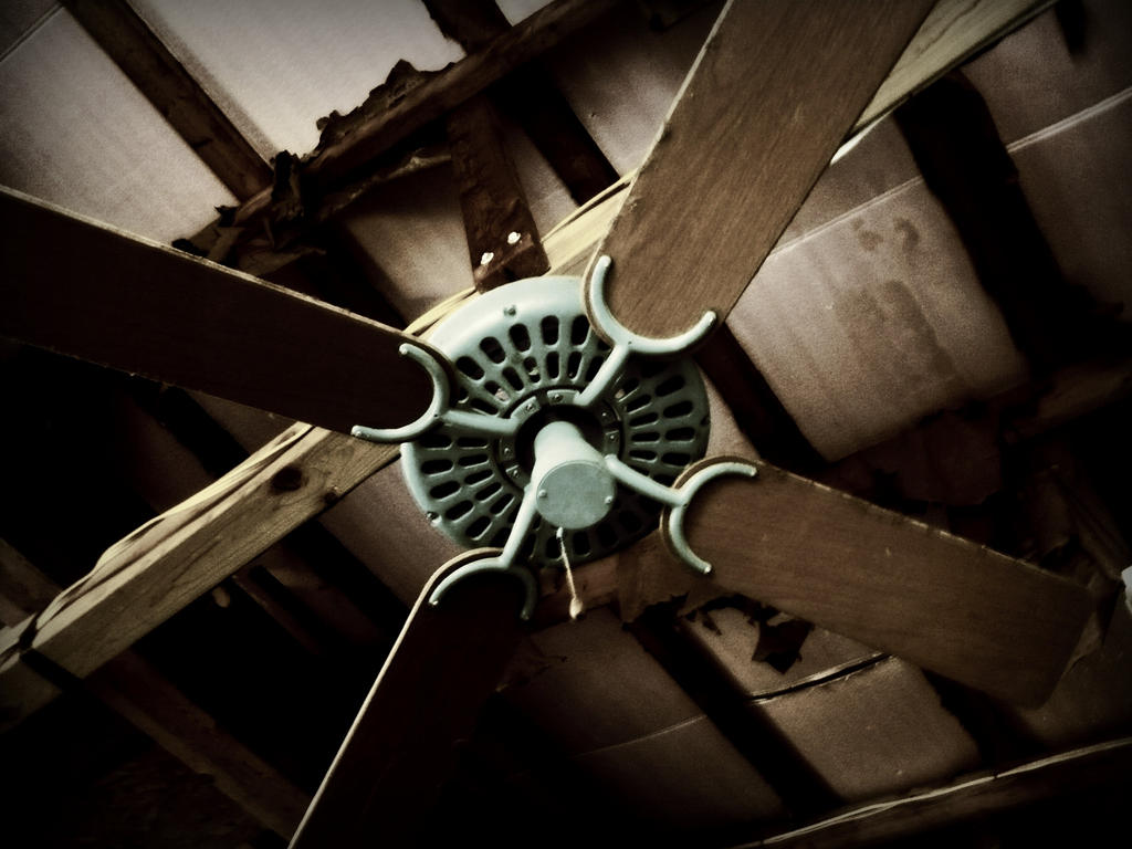 old fan 2 by Foreigner227