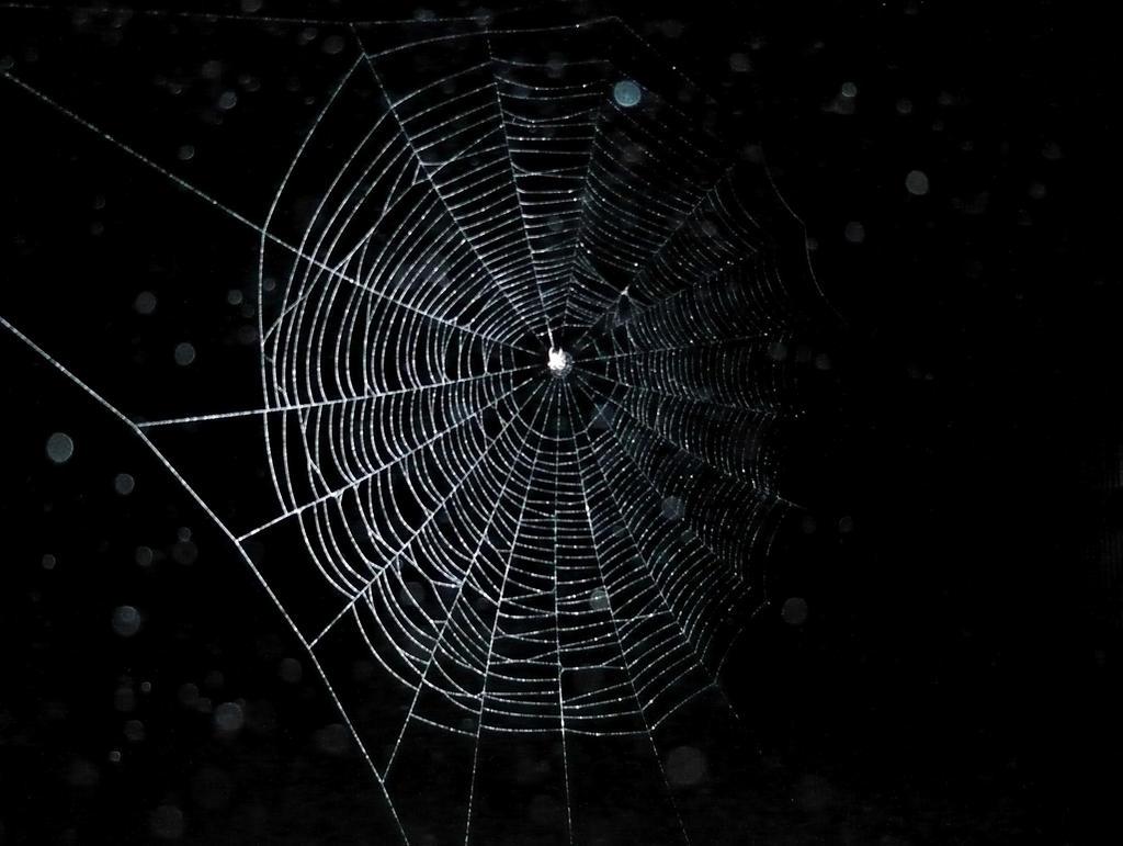 Dark web by Foreigner227