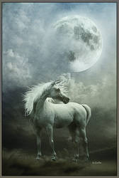 THE DREAM FROM UNICORN by greenfeed