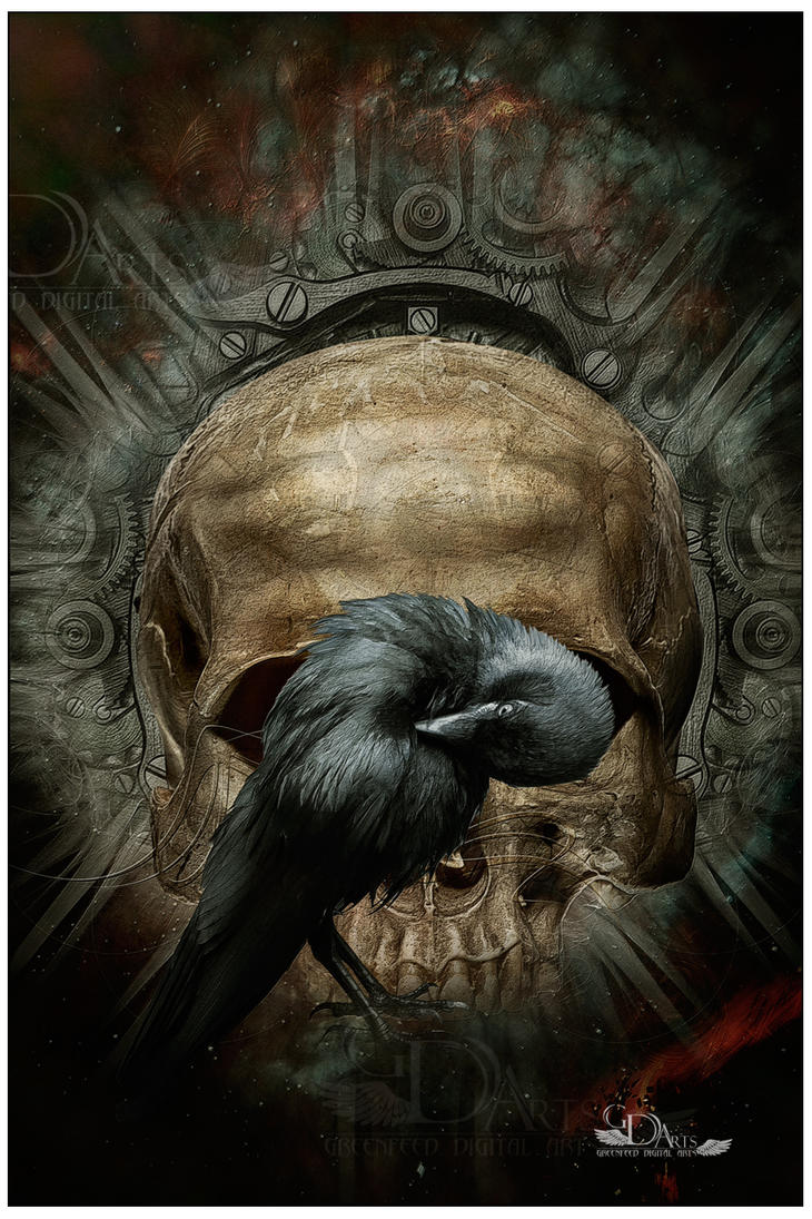 Skull and crow by greenfeed