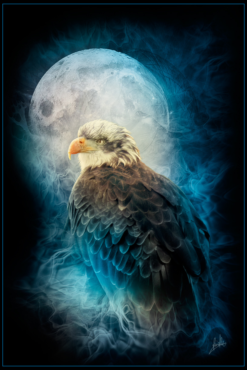 Eagel-in-the-Night by greenfeed