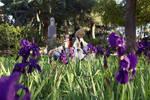 Flower field by Evinyakwende