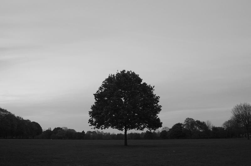 stranded. by darklightling