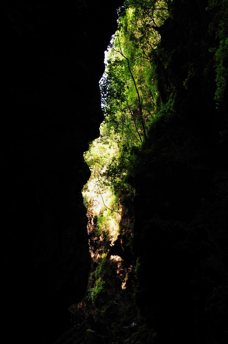 lost? by darklightling