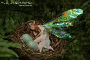 Fairy girl sleeping in a nest by AlvaroFuegoFatuo