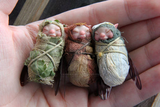 Baby faerie triplets!