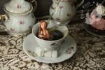 Teacup faerie (for sale)