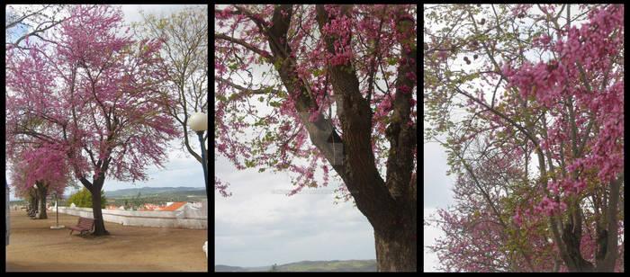 Pinky Tree