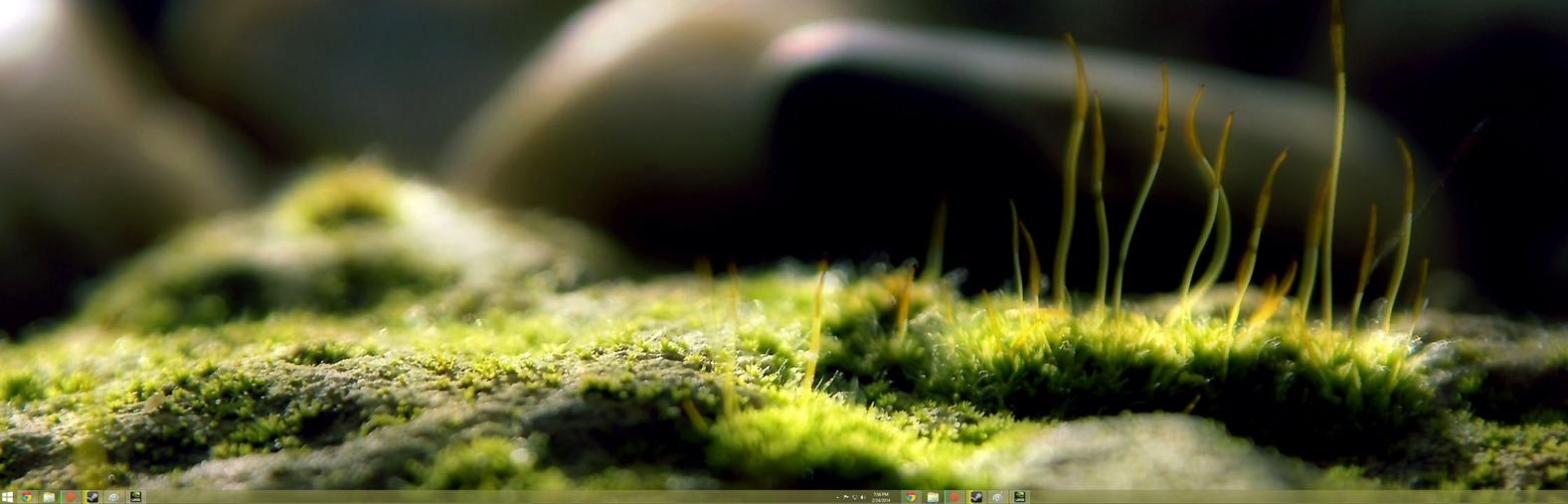 february_2014_desktop_screenshot__window
