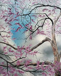 Redbud Before the Storm