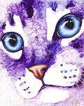 Lynx Point Close Up