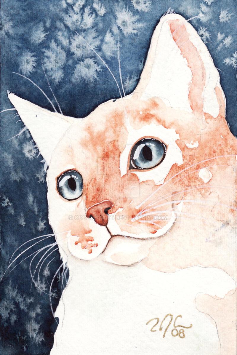 Starry Fire Cat by OdderByArt