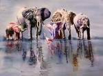 The final Elephants...