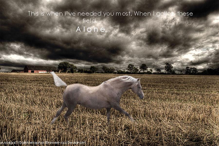 ^ Twilightstars ^ horses Horse_Manip_2_by_Emmerrr_xxx