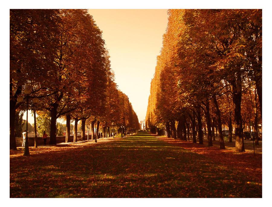 Park in Paris by SeiMissTake