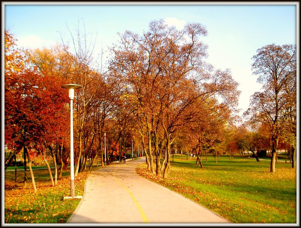 Boje jeseni by SeiMissTake
