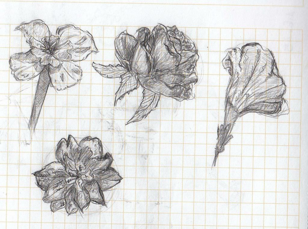 flowers by LuneDeLaNeige