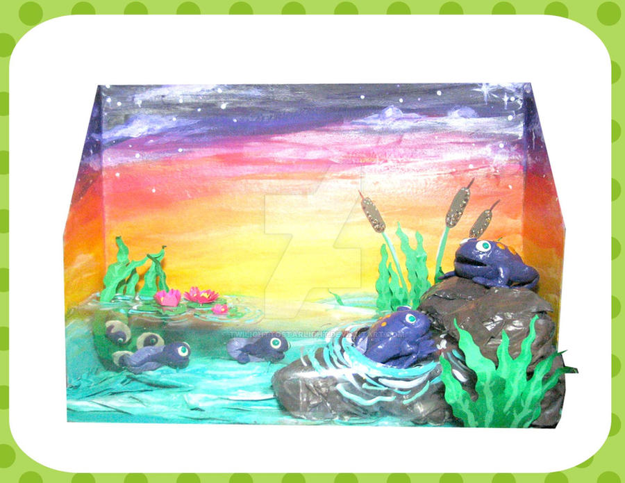 life cycle of a frog diorama by twilighttostarlight