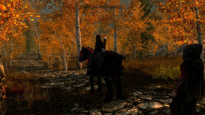 it's so beautiful around riften by psycopix