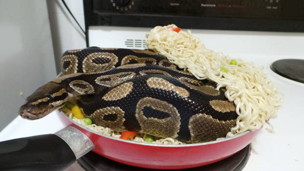 One of these noodles is not like the others
