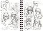 VolSa -Sketch Dump part I-