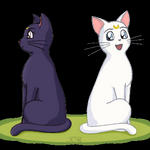 Luna and Artemis Animated by ToRi-V