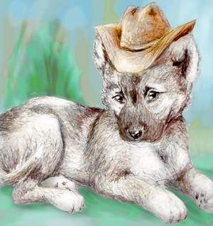 Puppy with Hat