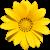 Flower icon.8