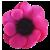 Flower icon.11 by RedqueenAllison